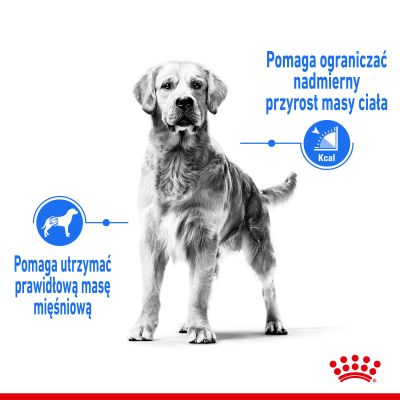 Royal Canin CCN Light Weight Care Medium