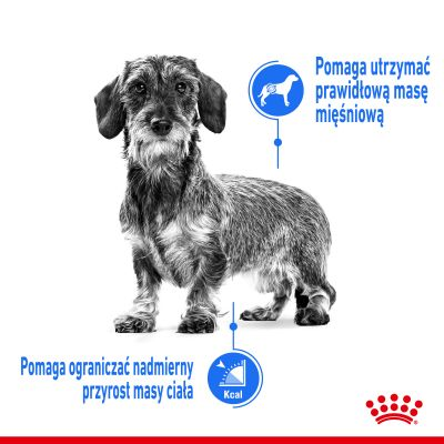 Royal Canin CCN Light Weight Care Mini