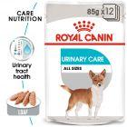 Royal Canin CCN Urinary Care