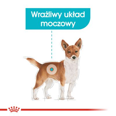Royal Canin CCN Urinary Care Mini