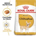 Royal Canin Chihuahua Adult Crocchette per cani