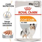 Royal Canin Coat Care comida húmeda para perros