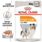 Royal Canin Coat Care comida húmida para cães