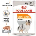 Royal Canin Coat Care pour chien