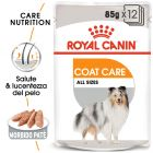 Royal Canin Coat Care umido