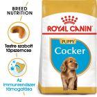 Royal Canin Cocker Puppy