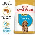 Royal Canin Cocker Puppy/Junior
