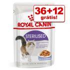 Royal Canin comida húmida 48 x 85 g em promoção: 36 + 12 grátis!