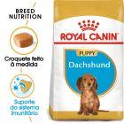 Royal Canin Dachshund Puppy/Junior