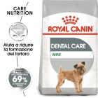 Royal Canin Dental Care Mini