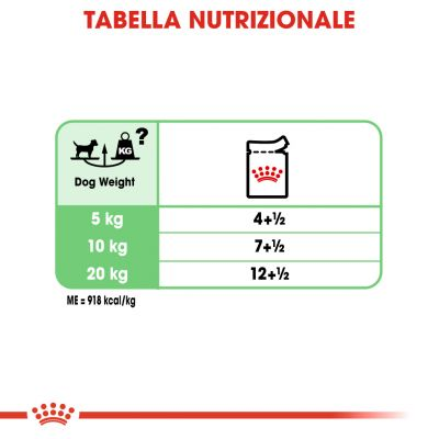 Royal Canin Digestive Care umido