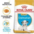 Royal Canin Dálmata Puppy/Junior