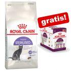 Royal Canin droogvoer + 12 x Royal Canin Sensory natvoer gratis!