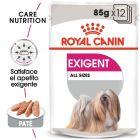 Royal Canin Exigent comida húmida para cães