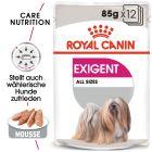 Влажный корм в качестве дополнения к Royal Canin Exigent Mini