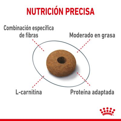 Royal Canin FCN Appetite Control Care pienso para gatos