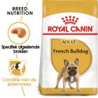 Royal Canin Franse Bulldog Adult - Hondenvoer