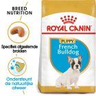 Royal Canin Franse Bulldog Puppy - Hondenvoer