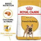 Royal Canin French Bulldog Adult Crocchette per cani