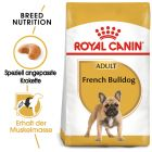 Royal Canin French Bulldog Adult pour chien