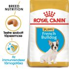 Royal Canin French Bulldog Puppy