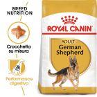 Royal Canin German Shepherd Adult Crocchette per cani