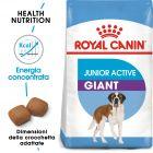 Royal Canin Giant Junior Active Crocchette per cani