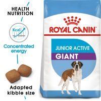 Royal Canin Giant Junior Active Hrană uscată