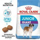 Royal Canin Giant Junior Crocchette per cani