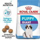 Royal Canin Giant Puppy Crocchette per cani