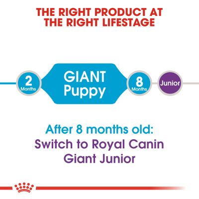 Royal Canin Giant Puppy / Junior