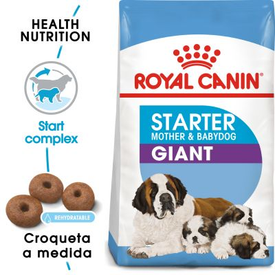 Royal Canin Giant Starter Madre y Cachorro