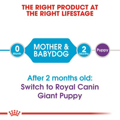 Royal Canin Giant Starter Mother & Babydog
