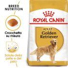 Royal Canin Golden Retriever Adult Crocchette per cani