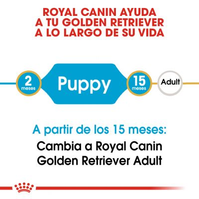 Royal Canin Golden Retriever Puppy