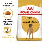 Royal Canin Great Dane Adult pour chien
