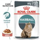 Royal Canin Hairball Care σε Σάλτσα