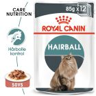 Royal Canin Hairball Care i sauce