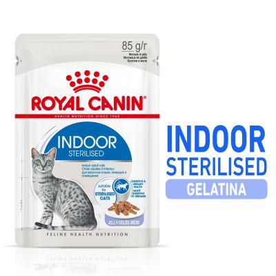 Royal Canin Indoor Sterilised en gelatina
