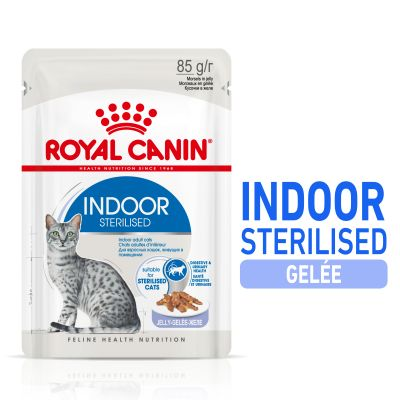 Royal Canin Indoor Sterilised en gelée pour chat
