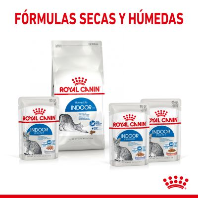 Royal Canin Indoor Sterilised en salsa