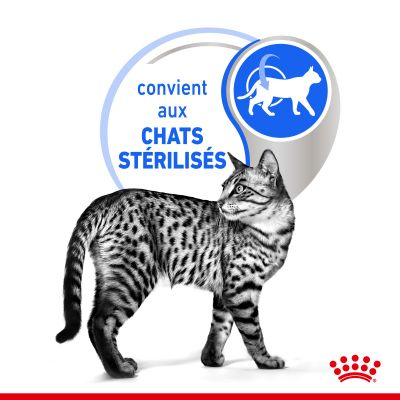 Royal Canin Indoor Sterilised 7+ en sauce pour chat