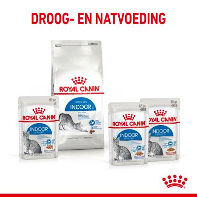 Royal Canin Indoor Sterilised in Gelei Kattenvoer