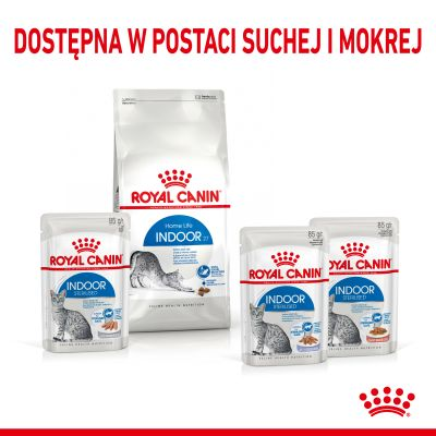 Royal Canin Indoor Sterilised w galarecie