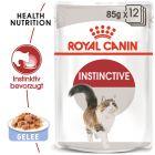 Royal Canin Instinctive en gelée pour chat
