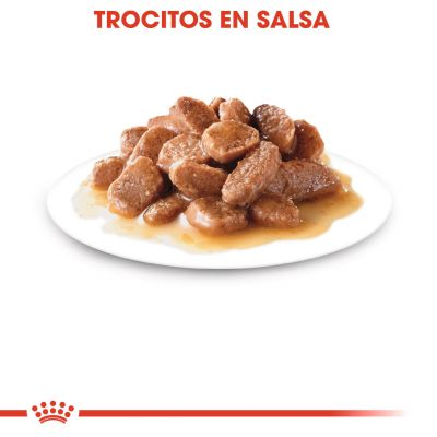 Royal Canin Instinctive en salsa