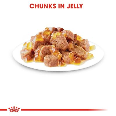 Royal Canin Instinctive in Jelly