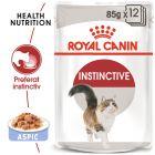 Royal Canin Instinctive în gelatină Hrană umedă