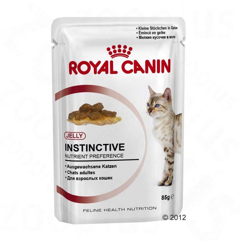 Royal Canin Instinctive v želé