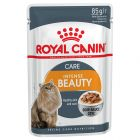 Royal Canin Intense Beauty em molho